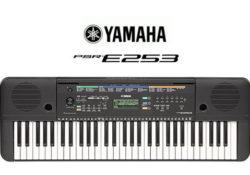 đàn organ yamaha psr e243