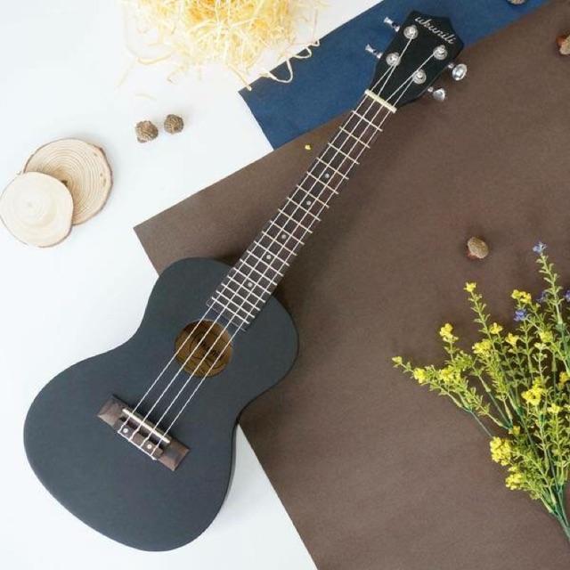 Top những cây đàn Ukulele Concert phù hợp với người Việt 1