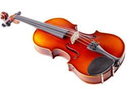 Tiêu chí quan trọng nhất khi chọn mua đàn violin 1