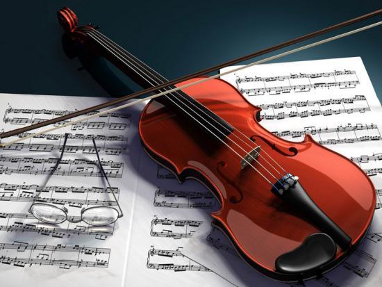 Tiêu chí quan trọng nhất khi chọn mua đàn violin 2