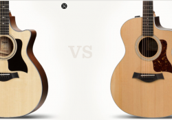 đàn guitar taylor 214 CE hay mua đàn guitar taylor 314CE